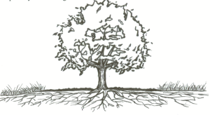 treerootssketch